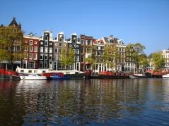 Język holenderski - widok