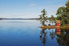 Język szwedzki - widok